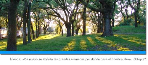 Despedida de Allende